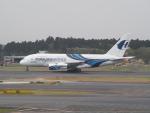 鷹71さんが、成田国際空港で撮影したマレーシア航空 A380-841の航空フォト(写真)