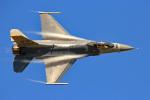 さかなやさんが、小松空港で撮影したアメリカ空軍 F-16CM-50-CF Fighting Falconの航空フォト(写真)