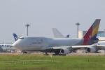 airdrugさんが、成田国際空港で撮影したアシアナ航空 747-48EMの航空フォト(写真)