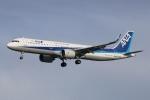 まえちんさんが、羽田空港で撮影した全日空 A321-272Nの航空フォト(写真)