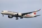 まえちんさんが、羽田空港で撮影した日本航空 A350-941XWBの航空フォト(写真)