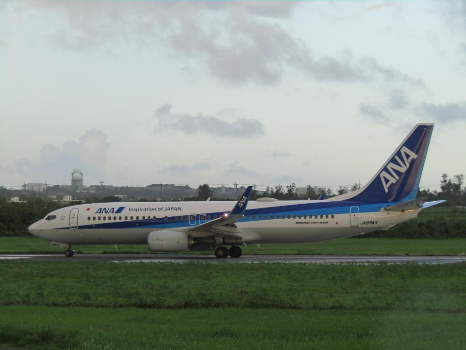 ノリださんの全日空 Boeing 737-800 (JA89AN) 航空フォト