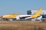 panchiさんが、成田国際空港で撮影したスクート (〜2017) 777-212/ERの航空フォト(写真)