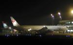 こうきさんが、新千歳空港で撮影した日本航空 777-346の航空フォト(写真)