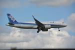 アルビレオさんが、成田国際空港で撮影した全日空 A320-271Nの航空フォト(写真)