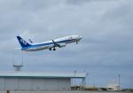 くーぺいさんが、那覇空港で撮影した全日空 737-8ALの航空フォト(写真)