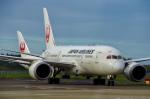 JA8943さんが、成田国際空港で撮影した日本航空 787-8 Dreamlinerの航空フォト(写真)