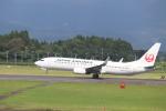 flyflygoさんが、鹿児島空港で撮影した日本航空 737-846の航空フォト(写真)