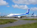 チェリーさんが、福岡空港で撮影した全日空 737-781の航空フォト(写真)