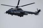 レドームさんが、羽田空港で撮影した海上保安庁 EC225LP Super Puma Mk2+の航空フォト(写真)
