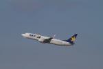 344さんが、福岡空港で撮影したスカイマーク 737-8Q8の航空フォト(写真)