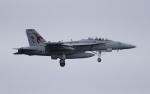 NOTE00さんが、三沢飛行場で撮影したアメリカ海軍 EA-18G Growlerの航空フォト(飛行機 写真・画像)