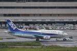 camelliaさんが、羽田空港で撮影した全日空 737-54Kの航空フォト(写真)