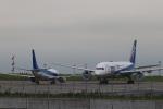 imosaさんが、羽田空港で撮影したANAウイングス 737-54Kの航空フォト(写真)