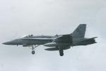 Mr.boneさんが、嘉手納飛行場で撮影したアメリカ海兵隊 F/A-18C Hornetの航空フォト(写真)