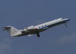 がいなやつさんが、新田原基地で撮影した航空自衛隊 U-4 Gulfstream IV (G-IV-MPA)の航空フォト(写真)