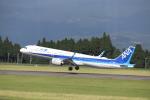 flyflygoさんが、鹿児島空港で撮影した全日空 A321-272Nの航空フォト(写真)