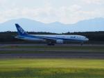 ここはどこ?さんが、新千歳空港で撮影した全日空 777-281/ERの航空フォト(写真)