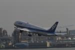 raiden0822さんが、羽田空港で撮影した全日空 787-8 Dreamlinerの航空フォト(写真)