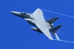 オポッサムさんが、小松空港で撮影した航空自衛隊 F-15J Eagleの航空フォト(写真)