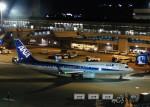 まひろさんが、中部国際空港で撮影した全日空 737-8ALの航空フォト(写真)