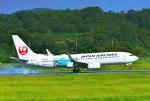 tutomuさんが、岡山空港で撮影した日本航空 737-846の航空フォト(写真)