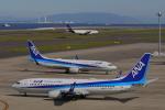 じゃりんこさんが、中部国際空港で撮影した全日空 737-8ALの航空フォト(写真)