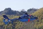らむさんが、静岡ヘリポートで撮影した埼玉県警察 EC135P2+の航空フォト(写真)