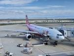 東亜国内航空さんが、関西国際空港で撮影したタイ・エアアジア・エックス A330-343Xの航空フォト(写真)