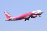 S.Chobyさんが、福岡空港で撮影したピーチ A320-214の航空フォト(写真)