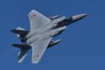sukiさんが、小松空港で撮影した航空自衛隊 F-15J Eagleの航空フォト(写真)