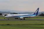 flyflygoさんが、熊本空港で撮影した全日空 737-881の航空フォト(写真)