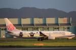 flyflygoさんが、熊本空港で撮影したチャイナエアライン 737-8FHの航空フォト(写真)