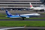 KAZKAZさんが、羽田空港で撮影した全日空 737-881の航空フォト(写真)