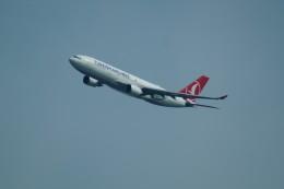 FRTさんが、ブヌコボ国際空港で撮影したターキッシュ・エアラインズ A330-203の航空フォト(飛行機 写真・画像)