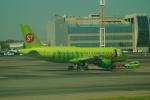 FRTさんが、ドモジェドヴォ空港で撮影したS7航空 A319-114の航空フォト(飛行機 写真・画像)