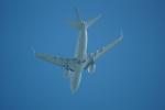 FRTさんが、ブヌコボ国際空港で撮影したバミューダ企業所有 737-73U BBJの航空フォト(飛行機 写真・画像)