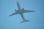 FRTさんが、ブヌコボ国際空港で撮影したUTエア・アビエーション 737-8GUの航空フォト(飛行機 写真・画像)