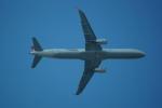 FRTさんが、ブヌコボ国際空港で撮影したターキッシュ・エアラインズ A321-231の航空フォト(飛行機 写真・画像)