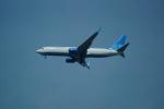 FRTさんが、ブヌコボ国際空港で撮影したポベーダ 737-8ALの航空フォト(飛行機 写真・画像)
