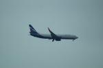 FRTさんが、プルコヴォ空港で撮影したアエロフロート・ロシア航空 737-8LJの航空フォト(飛行機 写真・画像)