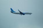 FRTさんが、プルコヴォ空港で撮影したポベーダ 737-81Dの航空フォト(飛行機 写真・画像)