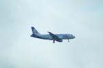 FRTさんが、プルコヴォ空港で撮影したウラル航空 A319-112の航空フォト(飛行機 写真・画像)