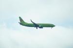 FRTさんが、プルコヴォ空港で撮影したS7航空 737-8GJの航空フォト(飛行機 写真・画像)