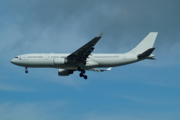 FRTさんが、プルコヴォ空港で撮影したアイ-フライ A330-223の航空フォト(飛行機 写真・画像)