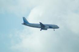 FRTさんが、プルコヴォ空港で撮影したヤマル・エアラインズ A320-232の航空フォト(飛行機 写真・画像)
