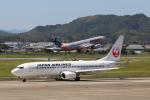 小型機専門家さんが、高知空港で撮影した日本航空 737-846の航空フォト(写真)