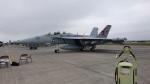 Koenig117さんが、横田基地で撮影したアメリカ海軍 EA-18G Growlerの航空フォト(写真)