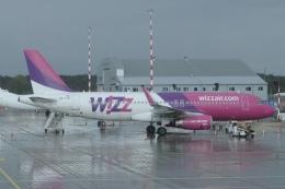 ユターさんが、リガ国際空港で撮影したウィズ・エア A320-232の航空フォト(飛行機 写真・画像)
