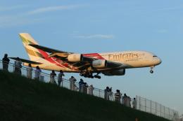 多楽さんが、成田国際空港で撮影したエミレーツ航空 A380-861の航空フォト(飛行機 写真・画像)